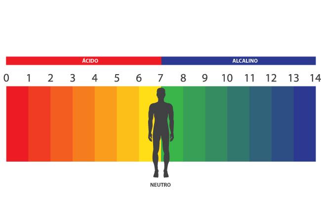 La acidez del organismo sus efectos en la salud y for Ph piscina bajo consecuencias