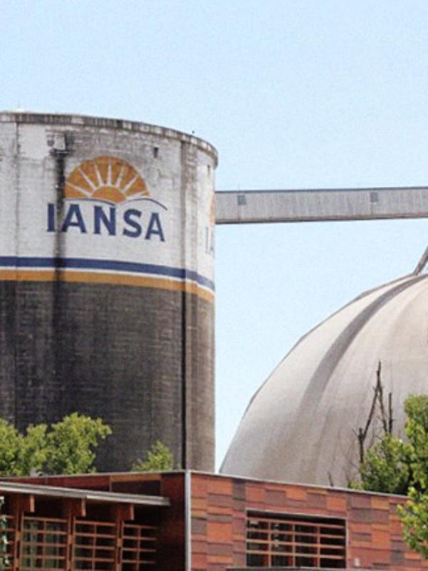 Breve análisis de la remolacha, la industria azucarera y el caso del cierre de la planta IANSA de Linares
