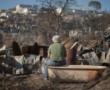 Que pasa en Chile con el Cuerpo de Carabineros. Surgen muchos interrogantes. Posibles causas de su crisis